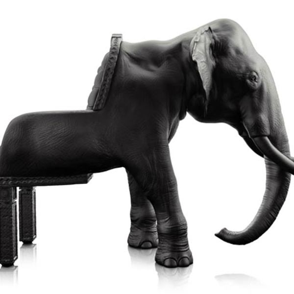 Animal chairs maximo riera 7