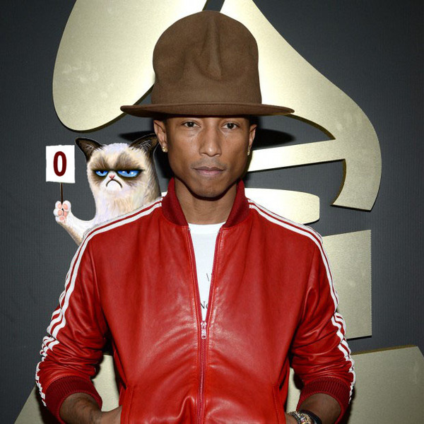 Pharrel grumpy cat