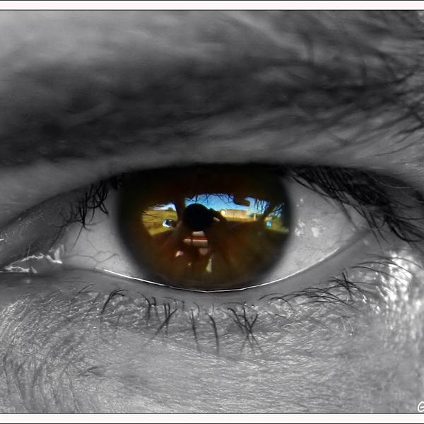 Welovewords captive dans tes yeux par mathilde en soir for Dans tes yeux