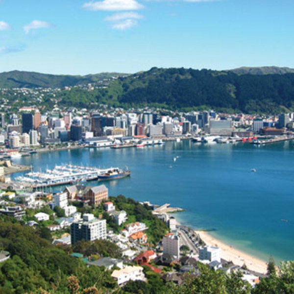 Regional wellington view