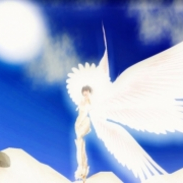 Seraphim wings beach 2576250 m