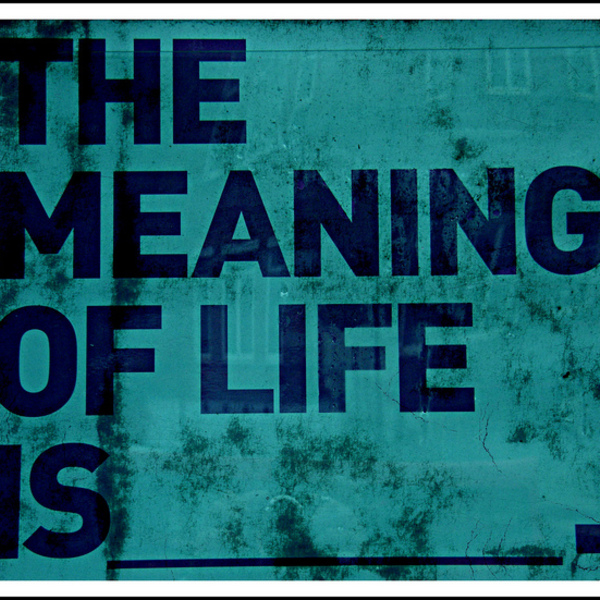 Meaning of life1