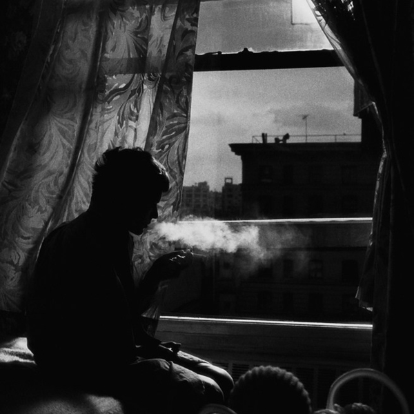 018 donata wenders wlw