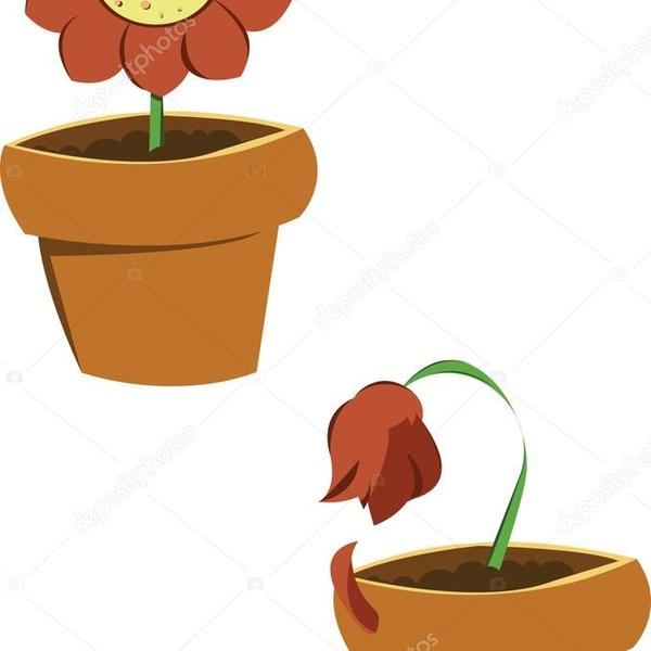 Depositphotos 12710157 stock illustration pots of flowers